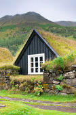 Overgrown Small House in Iceland — Stock Photo