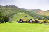Overgrown Typical Rural Icelandic houses at overcast day — Stock Photo