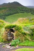 杂草丛生典型农村冰岛地下房子 — 图库照片