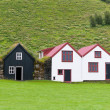 Typical Rural Icelandic houses — Stock Photo