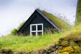 Overgrown Typical Rural Icelandic house closeup — Stock Photo