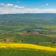 Outdoor Tuscan Hills Landscape — Stock Photo #22274847