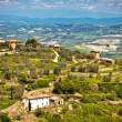 View from Montalcino town at Tuscan Hills Landscape. — Stock Photo