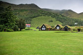 Overgrown Old Typical Rural Icelandic houses — Stock Photo