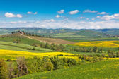 Tuscan farmhouse with green and yellow fields — Stock Photo