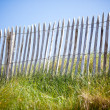 Wooden fence, Green Grass and Blue Sky — Stock Photo #22645635