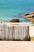 Wooden fence at Northern beach in France. — Stock Photo