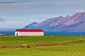 Parements blancs islandais maison au toit rouge — Photo