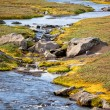 Summer Iceland Landscape with Small River Stream — Stock Photo