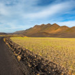 Highway through Iceland field landscape under a blue summer sky. — Stockfoto