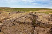 Iceland Caked Lava field landscape under a blue summer sky — Stock Photo