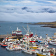 Typical Iceland Harbor with Fishing Boats — Stock Photo #23400618