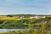 Islandská krajina s jezerem a statek na slunečné dobré počasí — Stock fotografie