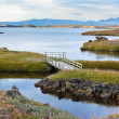 Myvatn Lake landscape at North Iceland — Stock Photo #23485631