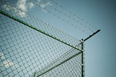 Razor and barbed wire fence — Stock Photo