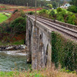 Old Rural Railroad Viaduct — Stock Photo #25193653