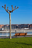 Empty wooden park bench with Marina View — Stock Photo