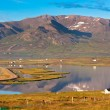 North Iceland Sea Lagoon Landscape — Foto Stock