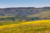 Outdoor Tuscan Val d Orcia green and yellow hills — Stock Photo
