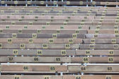Wooden Grandstand Seats with Numbers — Stock Photo