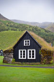 Overgrown Typical Rural Icelandic house at overcast day — Stock Photo