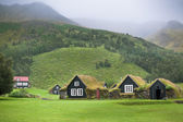 Overgrown Typical Rural Icelandic Houses — Stock Photo