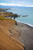 东冰岛的海岸 — 图库照片