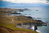 東アイスランドの海の海岸線 — ストック写真