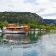 Touristic boat and swans in Skradin, Croatia — Stock Photo