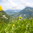 Hang glider pilot in Swiss Alps taken in summer, — Stock Photo