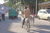 Jaipur city view, Rajastan, India — Stock Photo