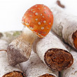 Toadstool in the birch forest (Amanita muscaria) - Stock Photo