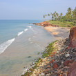 Tropical beach in Varkala, Kerala, India — Stock Photo #13892091