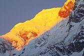 Annapurna Area, Himalayas — Stock Photo
