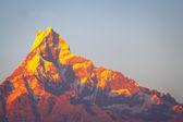 Beautiful landscape in Himalayas — Stock Photo