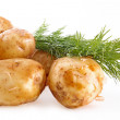 Fresh potatoes with fennel on a white background — Stock Photo