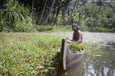 Man in canoe on Kerala Backwaters — Stock Photo