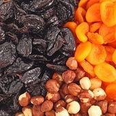 Dried fruits and hazelnuts backgtound — Stock Photo