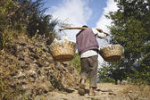 ANNAPURNA NATIONAL PARK, NEPAL - NOVEMBER 12: Nepali man carry heavy load in the Himalaya on November 12, 2012 in Annapurna national park, Nepal — Stock Photo