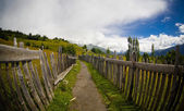 Old wooden fence in village — Stock Photo