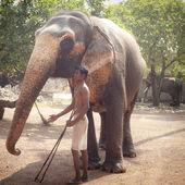 Hombre con elefante — Foto de Stock