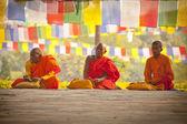 Pielgrzymkowym narodzin buddy — Zdjęcie stockowe