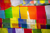 Buddhist praying flags — Stock Photo