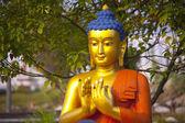 Buddha in Lumbini — Stock Photo