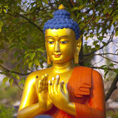 Buddha in Lumbini — Stock Photo