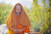 Pilgrim visit birthplace of Buddha — Stock fotografie