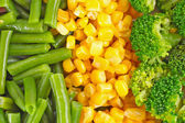 Menestra de verduras — Foto de Stock
