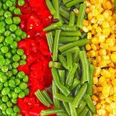 混合的蔬菜 — 图库照片
