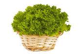 Zelený hlávkový salát — Stock fotografie