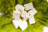 Lettuce and feta cheese — Stockfoto